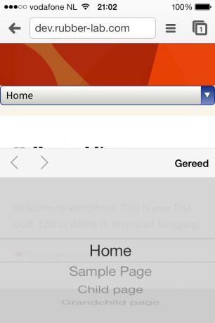 iOS menu expanded